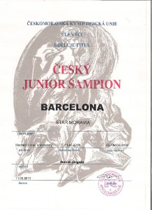 barcelona-junior-sampion-cr-001.jpg